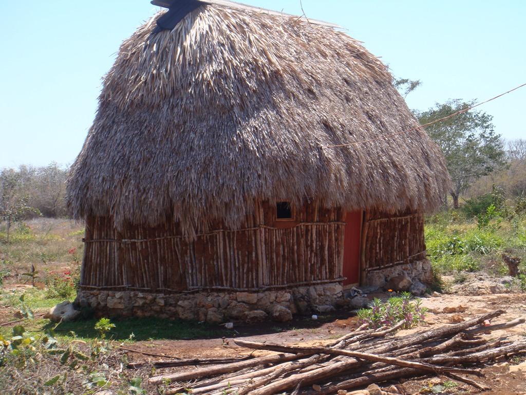 Leve mejora de las casas de paja donde viven la mayor a - Casas en la provenza ...